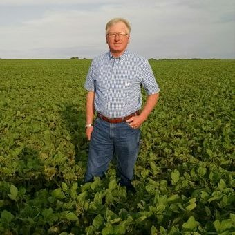 MSMC vice chair does strip trial, cover crop research