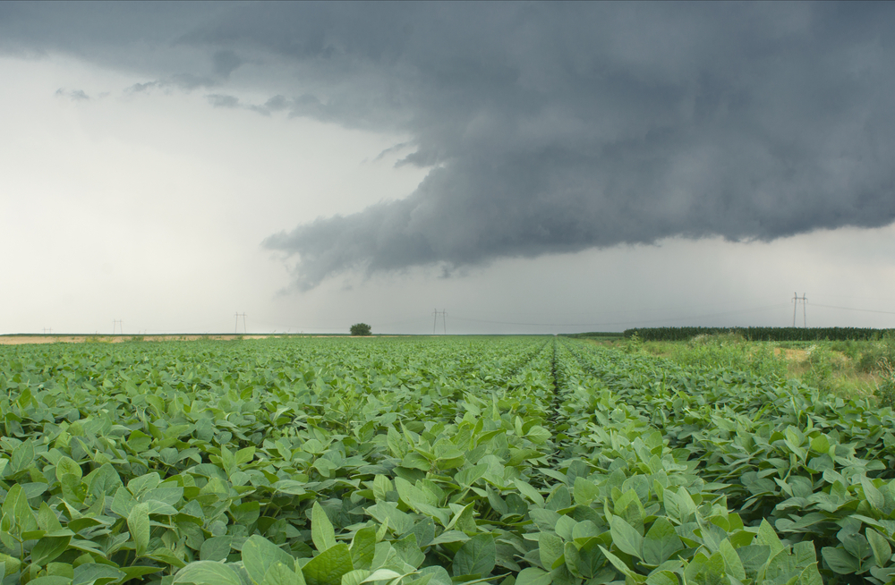 Missouri farmers say they can use rain