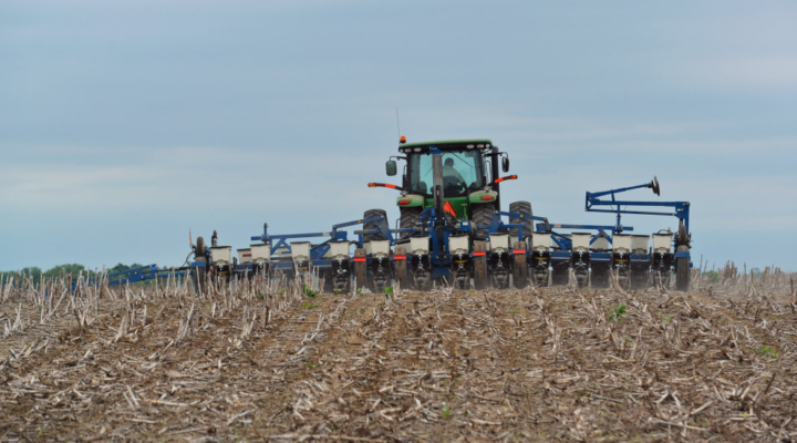 Planting intentions survey a first look at 2020 crop year