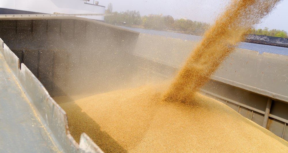 State grain inspectors make exports, domestic sales possible