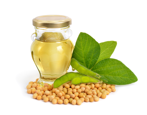 Biodiesel production builds soybean meal supply