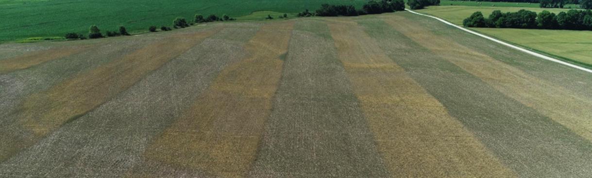 Missouri Soybean recruiting for on-farm strip trials