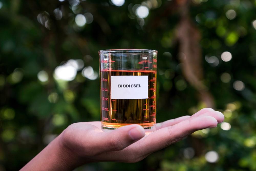 Biodiesel environmentally safe