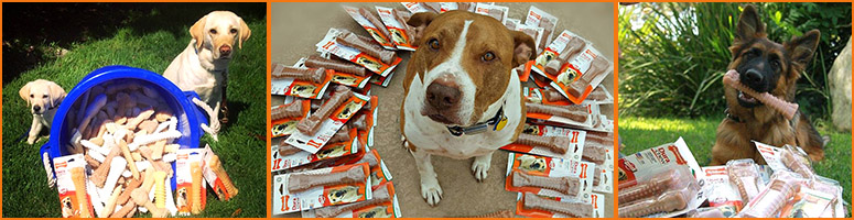 Original_nylabone_cares_header_v2