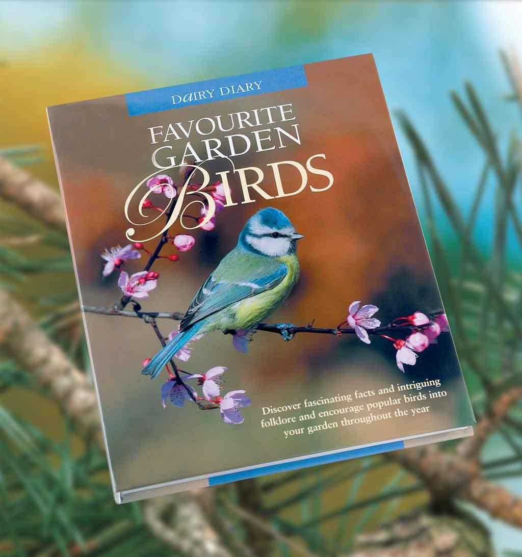 Win Favourite Garden Birds