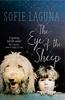 Eye of the Sheep by Sofie Laguna