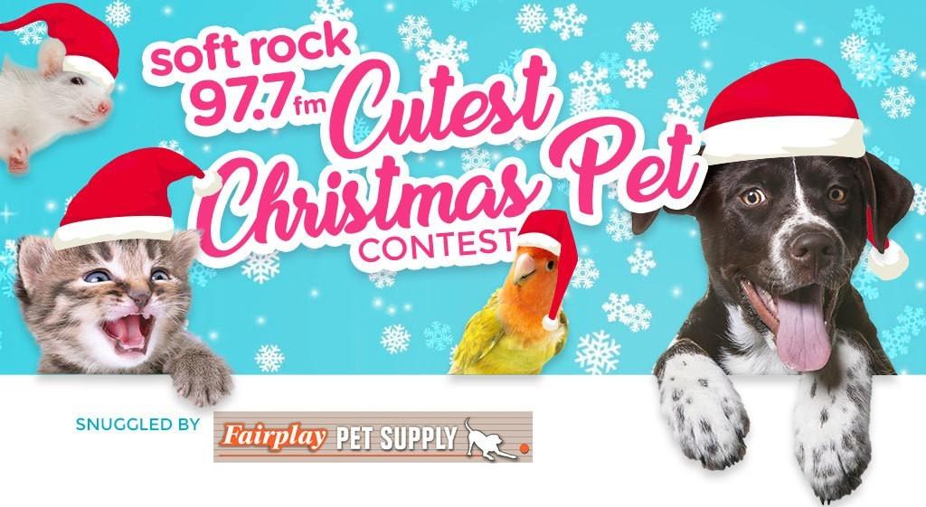 Soft Rock 97.7 Cutest Pet Contest