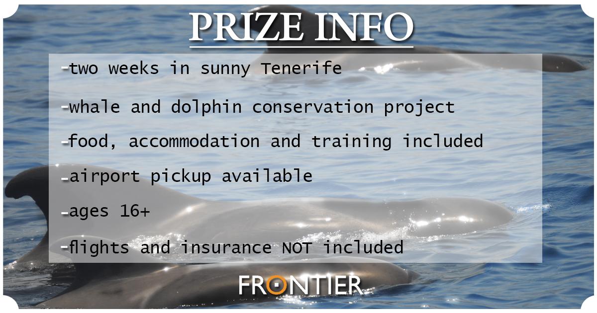 Original_prize_info