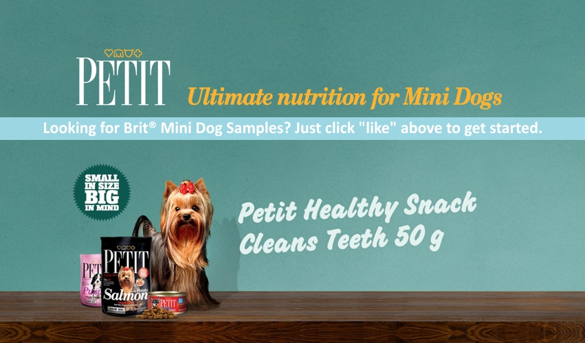 Petit Healthy Snack Cleans Teeth Dog Treat Sample