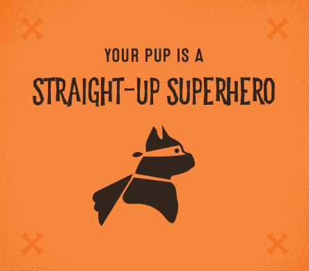 Your pup is a straight-up superhero.