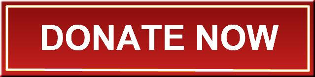 Original_donate-now-button
