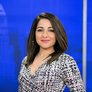 Maytal Levi, Reporter