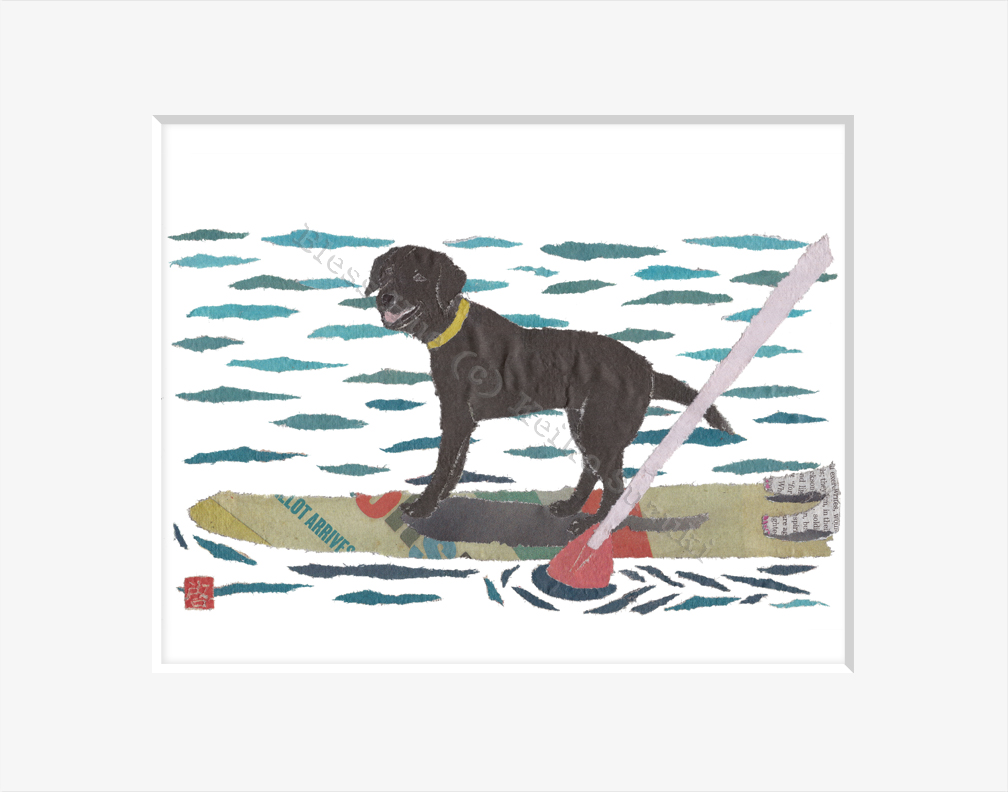 Black Labrador On Paddle Board