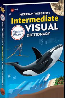 Merriam-Websters Intermediate Visual Dictionary