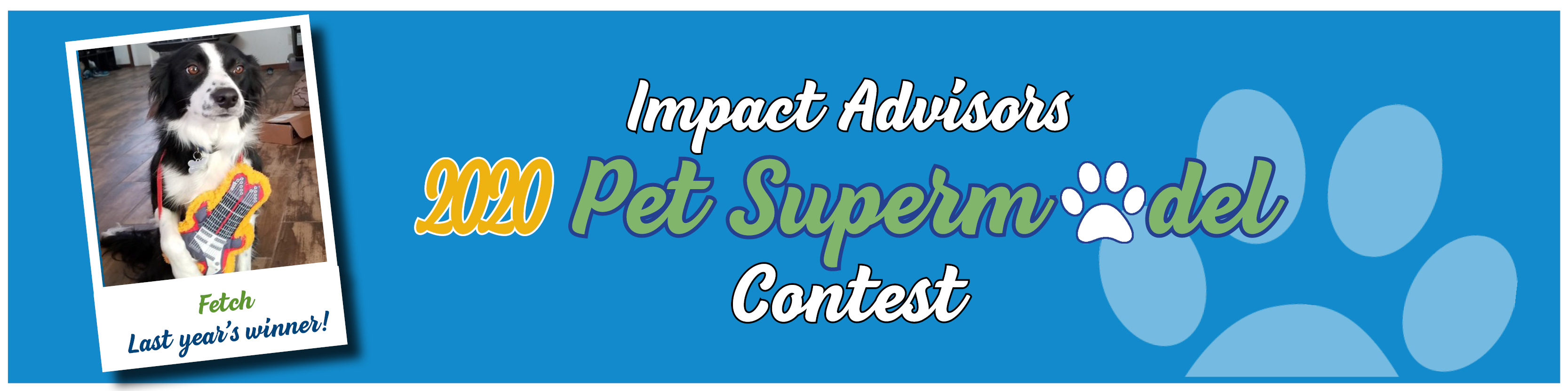 Impact Advisors Pet Supermodel Competition 2020